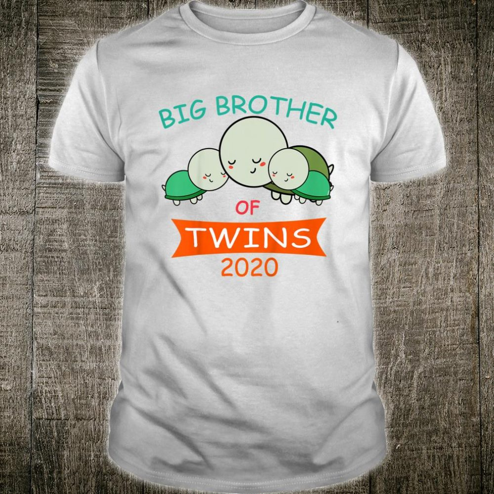 Big Brother of Twins 2020 Turtle Twin Shirt